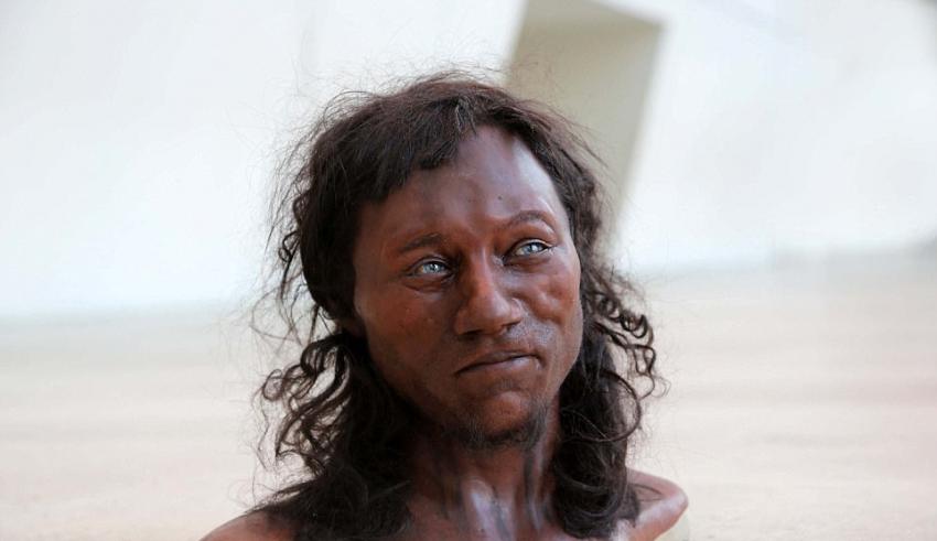 des test adn d montrent que les premiers bretons avaient la peau noire et les yeux bleus. Black Bedroom Furniture Sets. Home Design Ideas